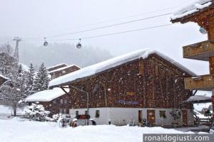 Bodmi, Jungfrau Region